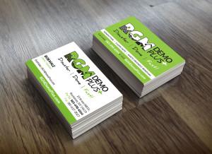 RGM Demo Plus Business Cards